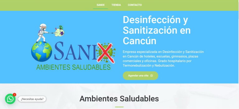 diseño web Sanix